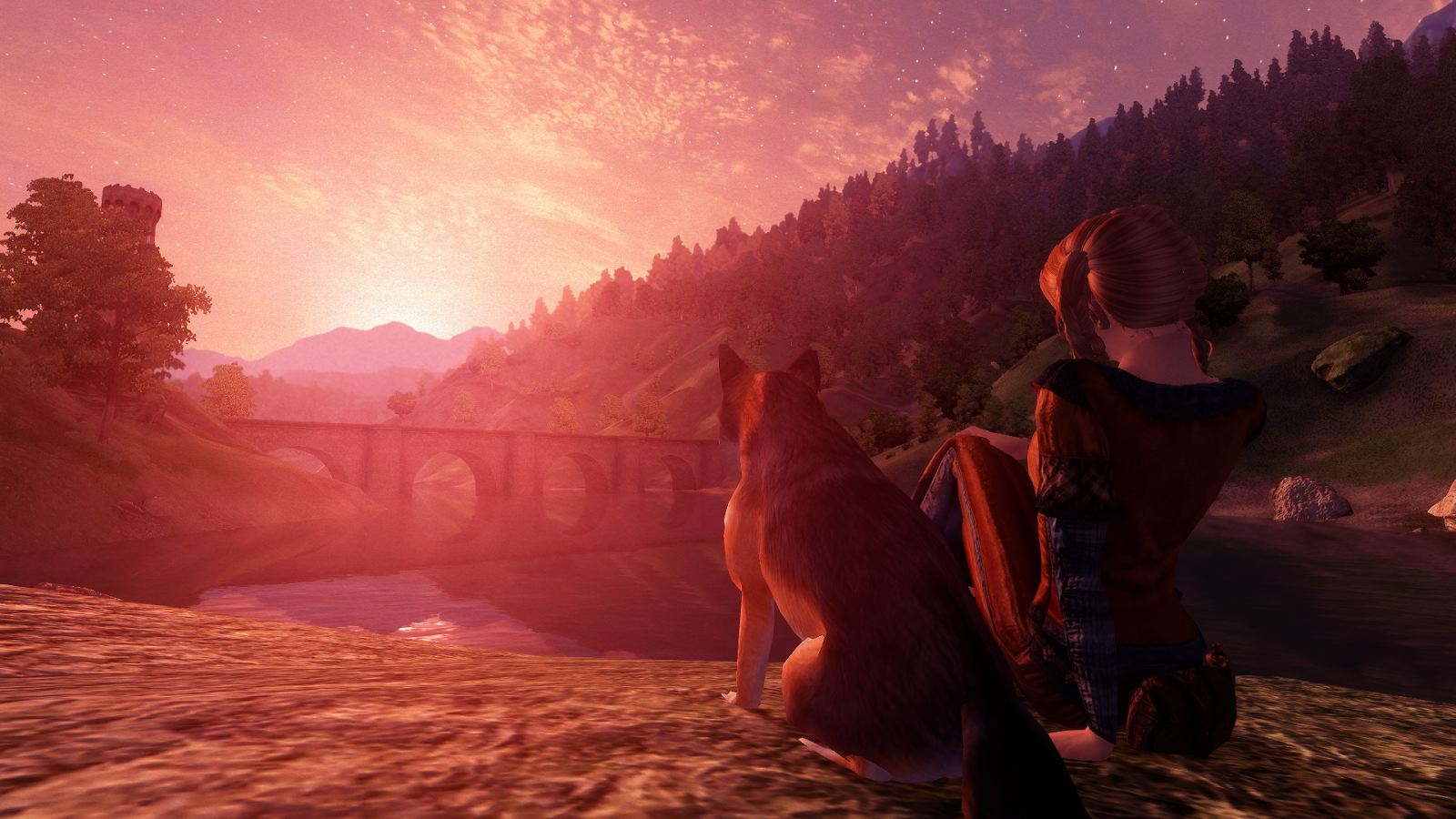 Elli and her fox Rusty watching the sunset.